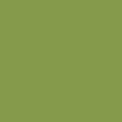 Зелёный киви U626 ST9
